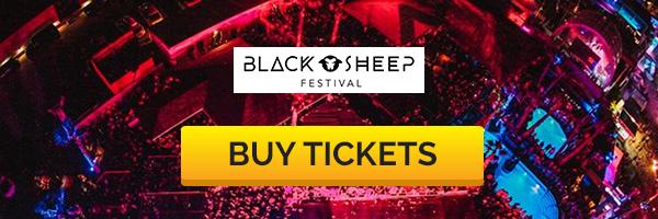 black-sheep-buy